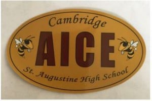 Get Your Student Designed Magnets and Stickers! $10 each. The proceeds are used to help make university bus trips affordable, fund AICE activities for our students & support AICE Teachers. See Mrs. Bechtle in guidance to purchase yours.