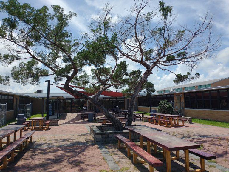 SAHS-Courtyard.jpg